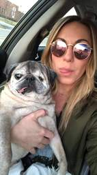 pug rescued from puppy mill