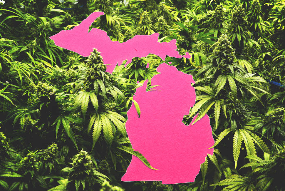 How to Get Medical Marijuana in Michigan: Where to Get Legal