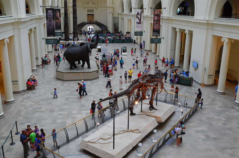 Best Museums in Chicago: Art, History & Other Museums Worth