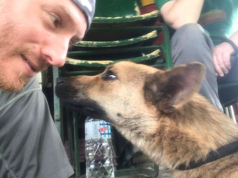 Dog touching noses with hiker