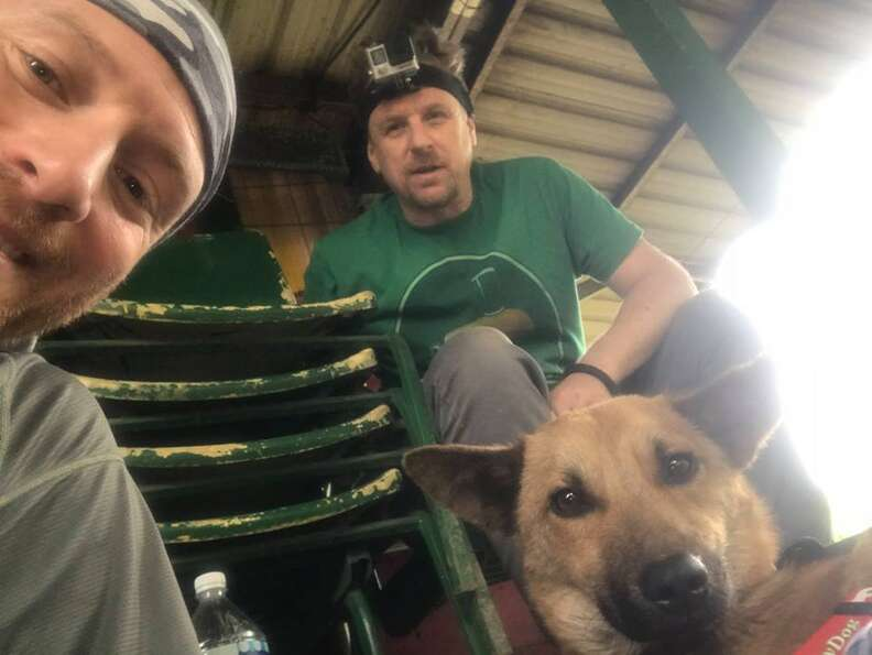 Hikers with rescued dog