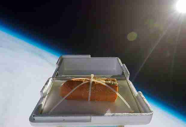 These People Sent Garlic Bread to the Edge of Space in a Balloon, Then Ate It