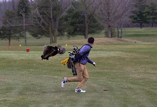 A Goose Attacked a Kid Playing Golf and the Photos Are Unbelievable