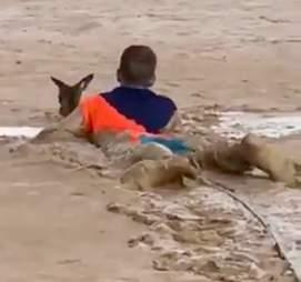 kangaroo mud rescue australia