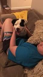 Dog cuddling with boy at home