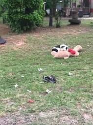 Dog with teddy bear lying on grass
