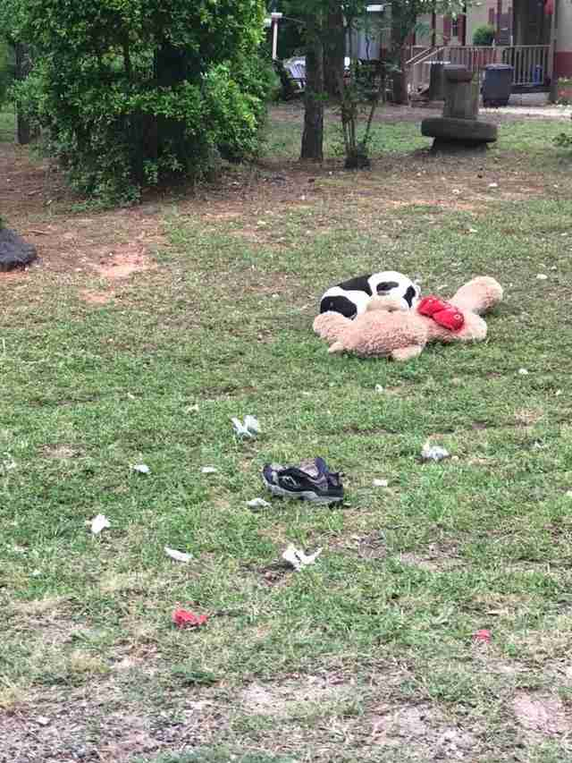 Dog with teddy bear lying on grass