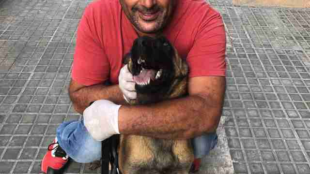 Man hugging Malinois dog