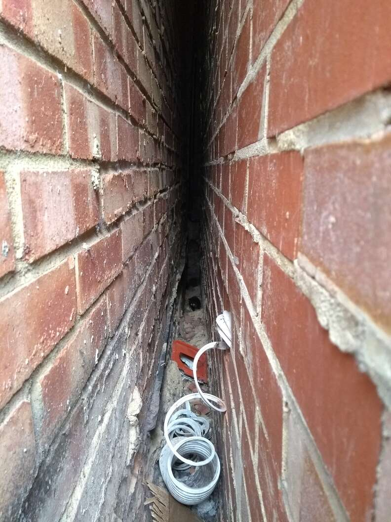 kittens trapped between two walls