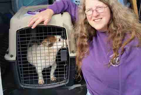 Mirabel being transfer to Woodstock Animal Clinic