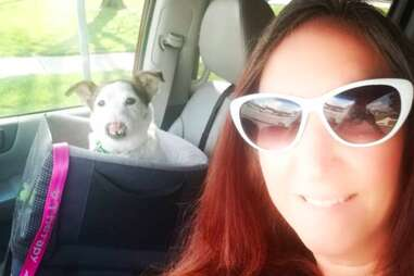 Mirabel the dog born without a nose and her new owner