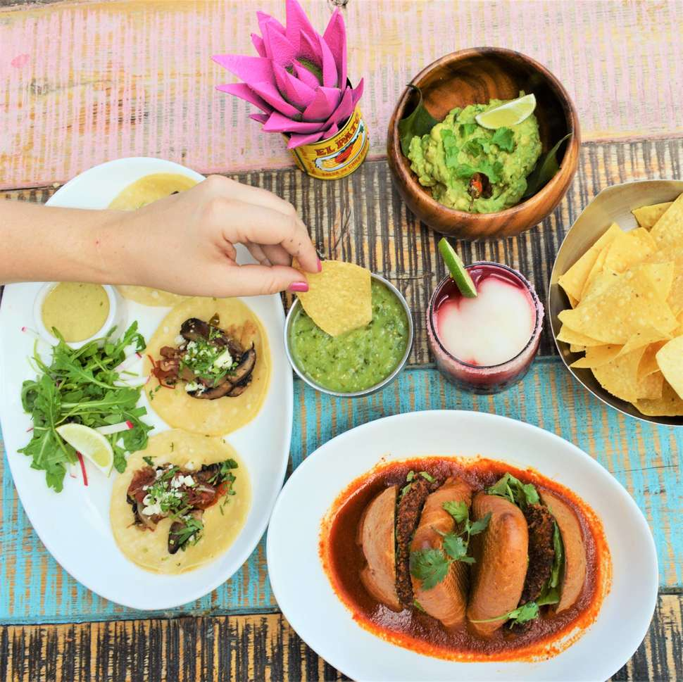 best mexican restaurants in dallas where to find the best mexican