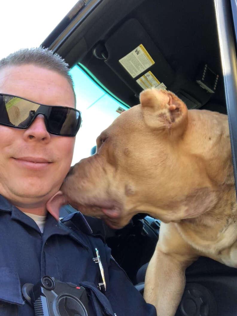 Dog licking officer's face