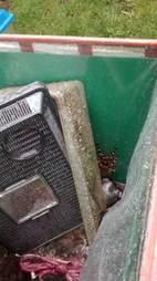 tarantula found in dumpster