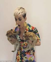 Singer Katy Perry holding two lion cubs