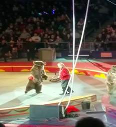 Trainer with circus bear during a performance