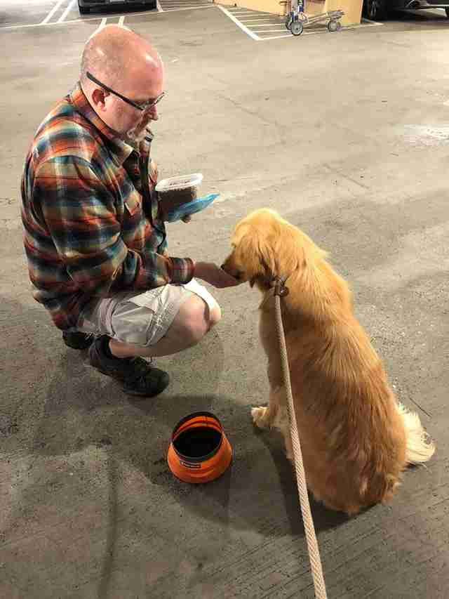 Man feeding dog in parking lot