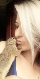 Squirrel kissing rescuer