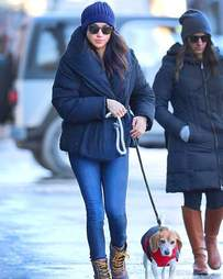 royal dog guy meghan markle