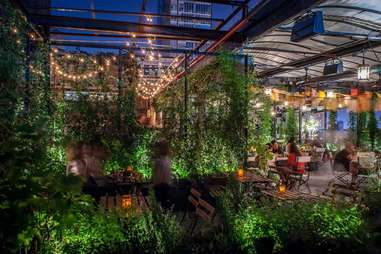 The rooftop at Gallow Green