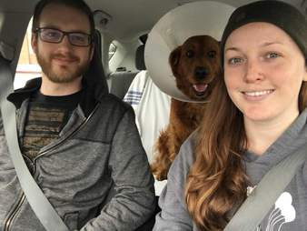 Golden retriever riding in the back of car with two people