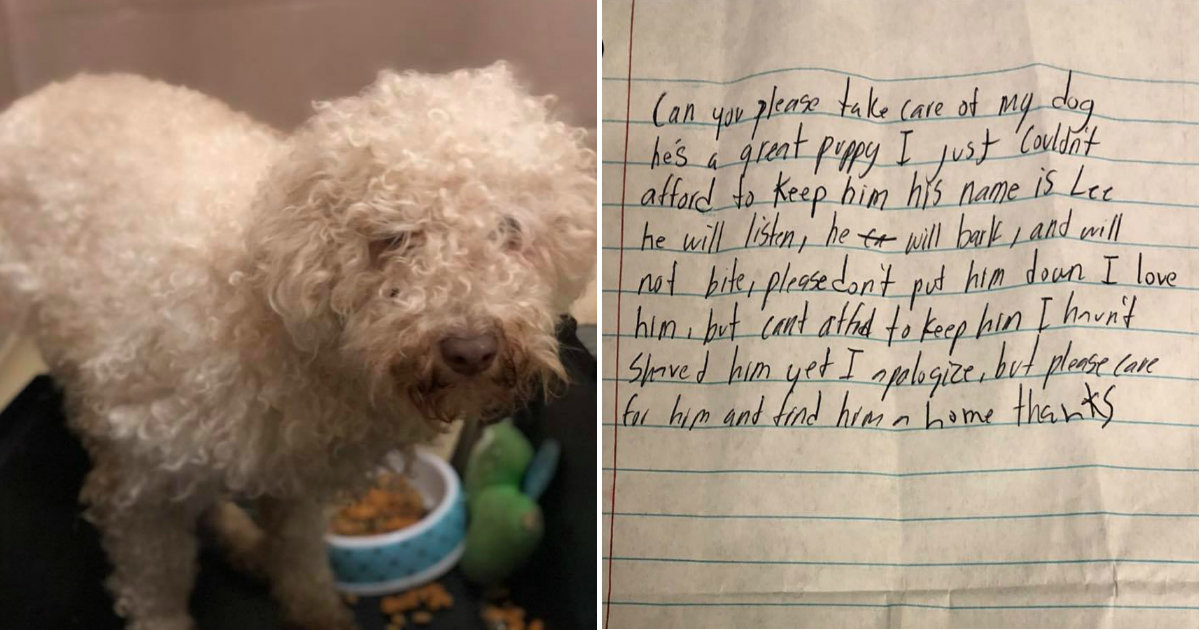 Dog Abandoned In Parking Lot With The Saddest Note
