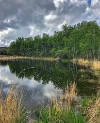 Ann & Sandy Cross Conservation Area near Calgary, Canada