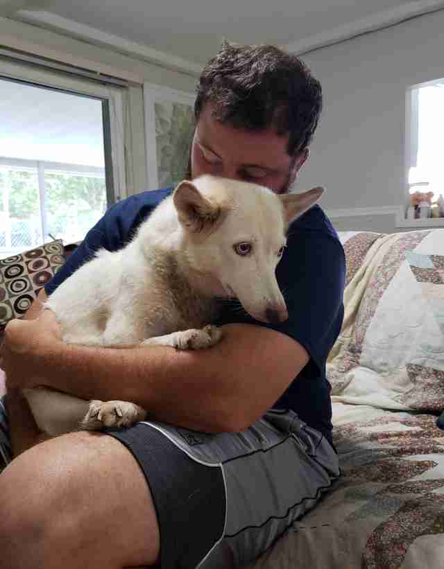 Lucky and a volunteer from GTS Husky Rescue