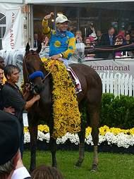 American Pharoah winner of the Triple Crown