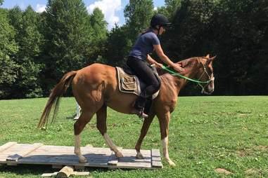 Groomedforvictory after his retirement