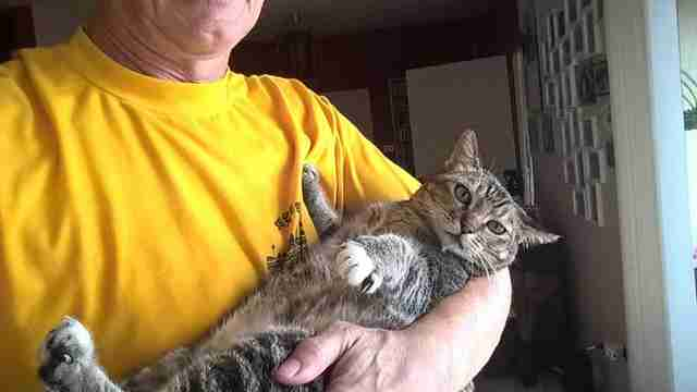 Man holding cat in his arms