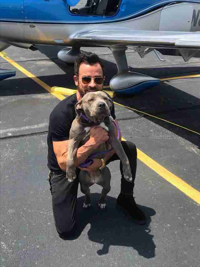 Justin Theroux welcomes Kuma to New York
