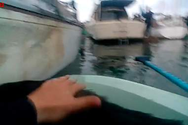 Dog being rescued from burning boat