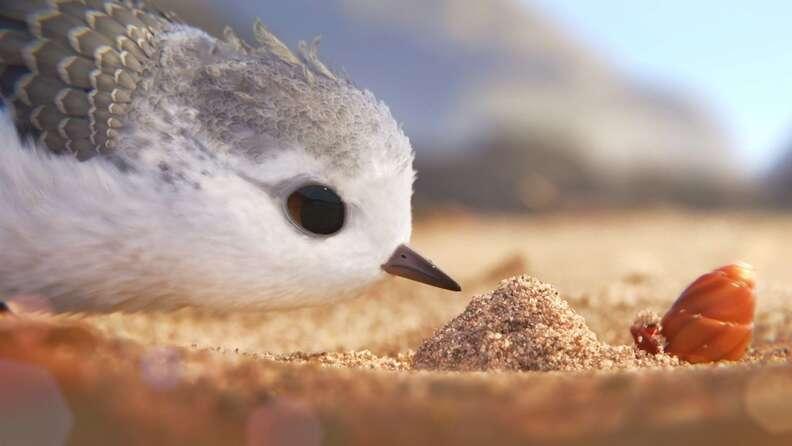 piper pixar short films