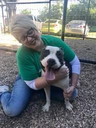 pit bull abandoned texas shelter