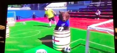 Captive bear being forced to put soccer ball into barrel