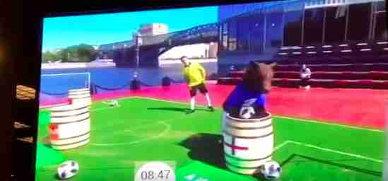 Bear being forced to perform on Russian TV show