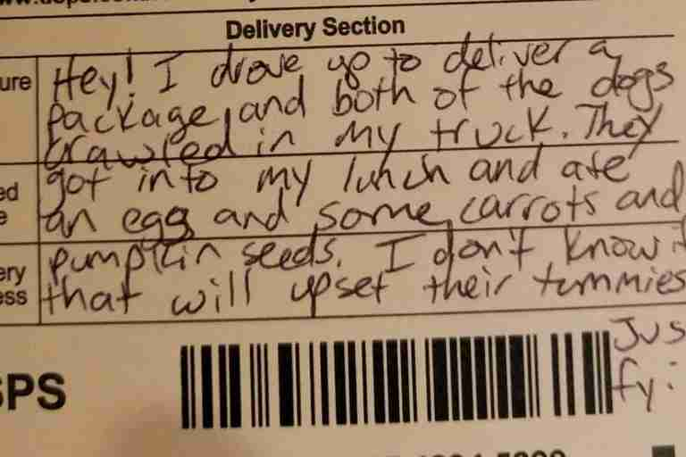 Postal worker's note about dogs eating lunch
