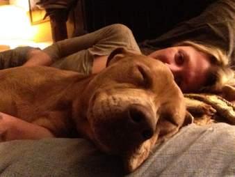 Dog cuddling with woman
