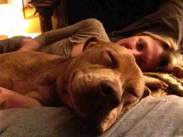 Dog cuddling with woman