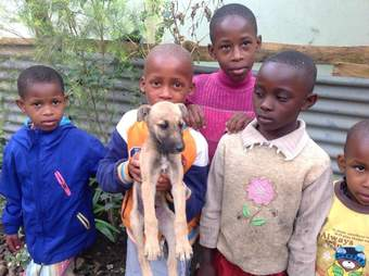 Little kids holding stray puppy