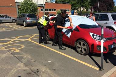 Police break into a hot car to save dogs in York