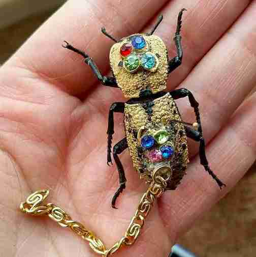 live beetle jewelry mexico