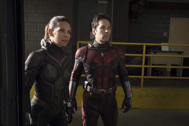 antman and the wasp movie