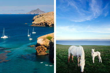santa cruise island