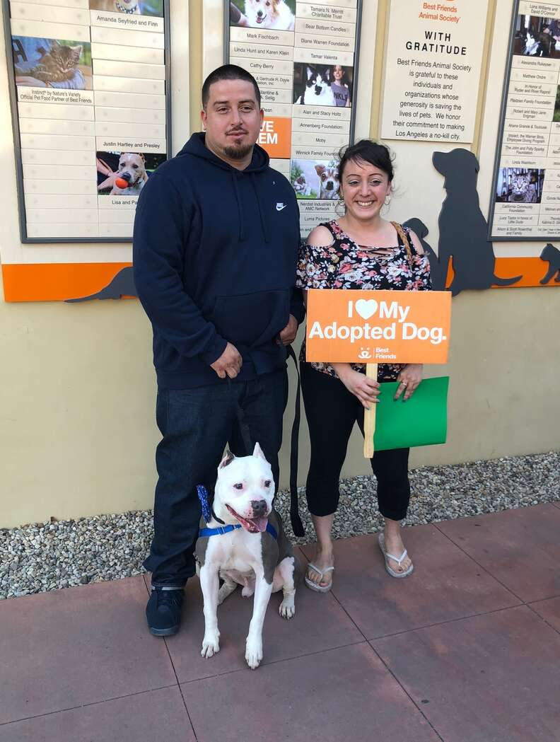 Lucy Fraustro re-adopts her missing dog