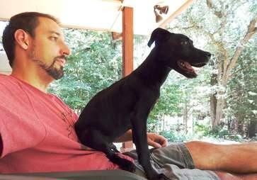Puppy sitting on man's chest