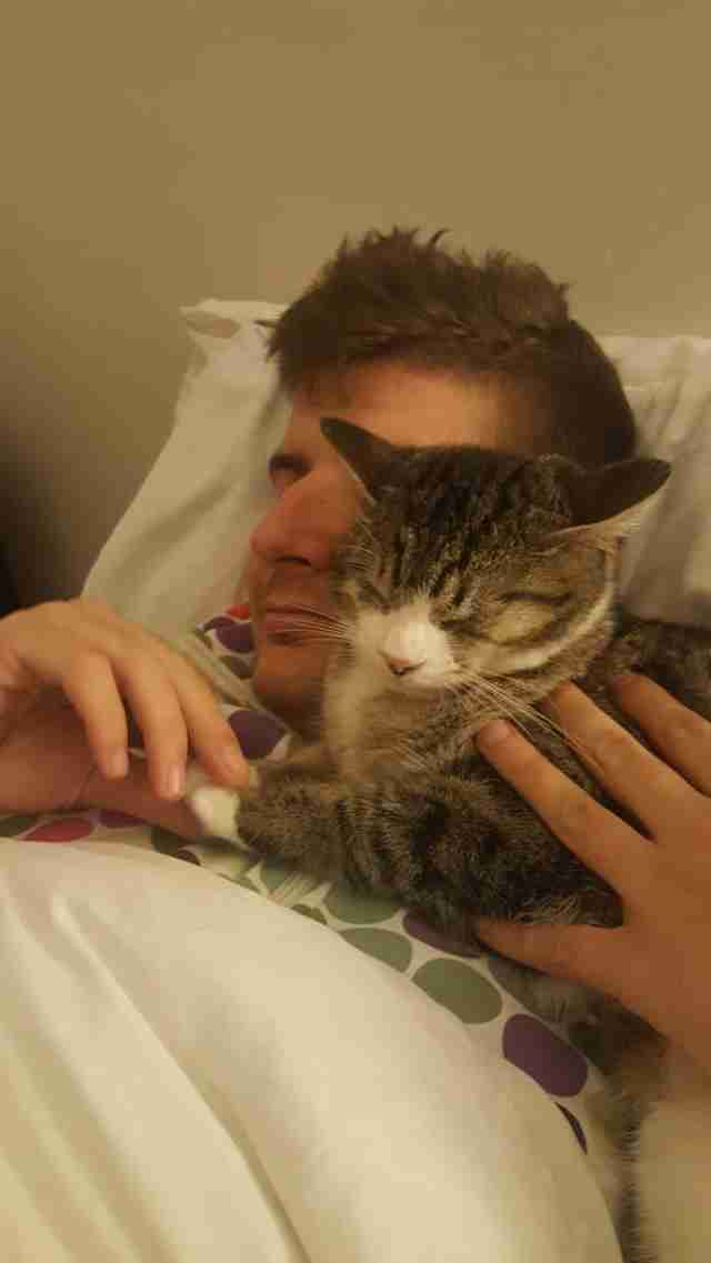 Cat snuggling with man in bed