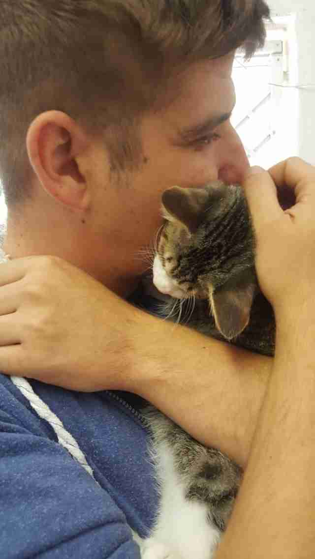 Cat cuddling with man