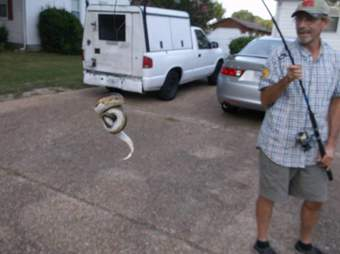 python rescue virginia beach